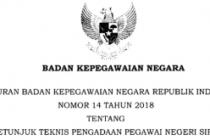 Download Peraturan BKN Nomor 14 tahun 2018 tentang Petunjuk Teknis Pengadaan PNS