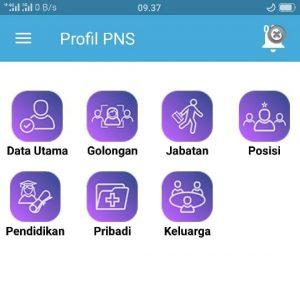 Update Cek NIP dan Data Profil PNS