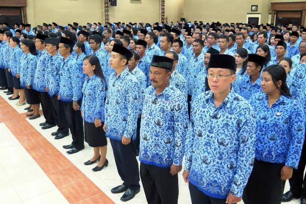 Pengaturan Jabatan Administrasi dan Jabatan Fungsional Bagi PNS Menurut PP Nomor 11 Tahun 2017