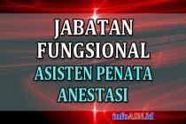 Jabatan-Fungsional-Asisten-Penata-Anestesi
