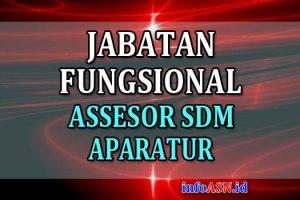 Jabatan Fungsional Assessor SDM Aparatur