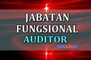 Jabatan-Fungsional-Auditor
