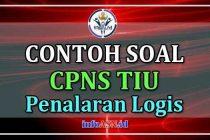 Contoh-Soal-CPNS-penalaran-logis
