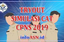 Tryout-Online-CPNS-2019
