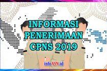 penerimaan-cpns-2019