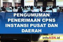 Pengumuman Penerimaan CPNS 2019