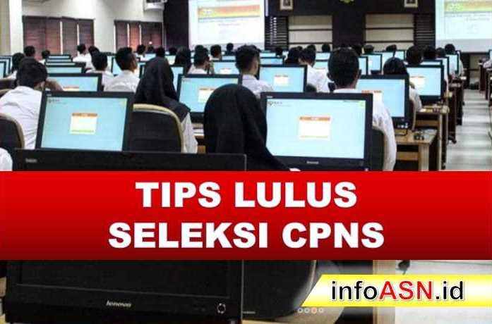 Tips Lulus CPNS, Lulus Seleksi CPNS