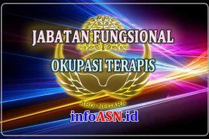 Jabatan Fungsional Okupasi Terapis