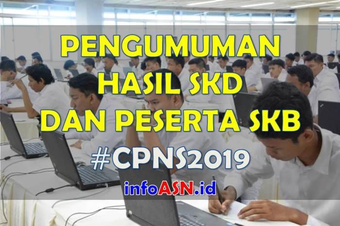 Pengumuman Hasil SKD CPNS 2019