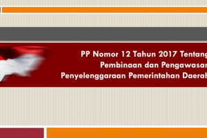 PP Nomor 12 Tahun 2017