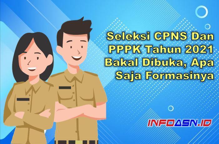 Seleksi CPNS dan PPPK 2021 Bakal Dibuka
