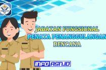 Jabatan Fungsional Penata Penanggulangan Bencana
