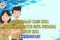 penerimaan casn 2021